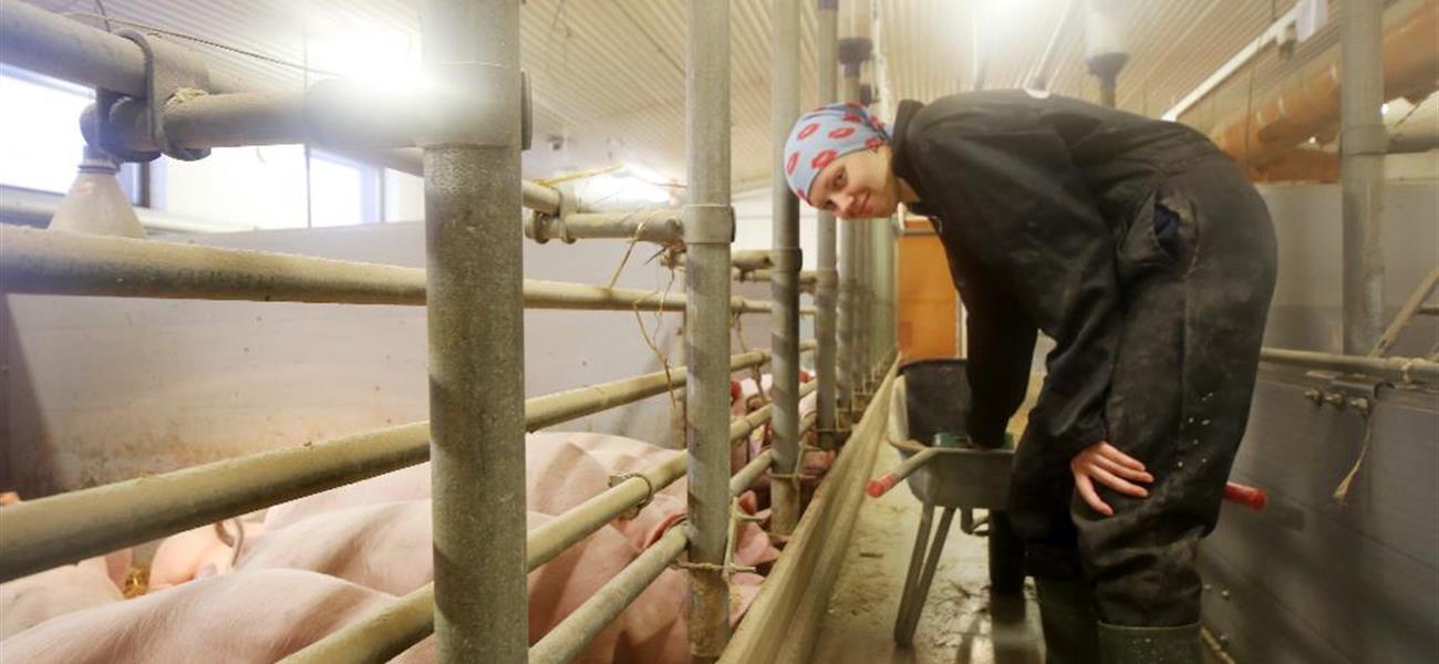 Maarit Flink opiskelee maaseutuyrittäjäksi